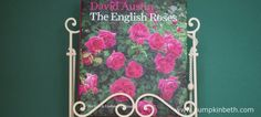 Book Review - The English Roses - Pumpkin Beth David Austin Roses, Gardening Books, English Roses, Book Reviews, Beautiful Roses, Christmas Gifts, Pumpkin, Gift Ideas, Fun