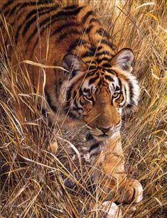 carl brenders-tall-grass-tiger