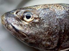 άφταστα πολίτικα γεμιστά και τα μυστικά τους   Pandespani Fish And Seafood, Meat