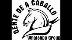 Competencia de Caballos Bailadores Navojoa Oct 2016 - Suscribete y Compa...