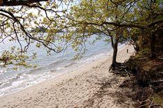 Westerly shoreline of Poole bay