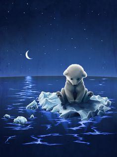 Baby Polar Bear all alone on the floating ice in the starry night with half moon. Hurry up Momma bear.
