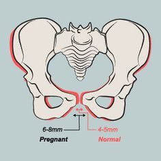 Pelvic Pain during pregnancy...don't worry, it's normal...painful, but normal