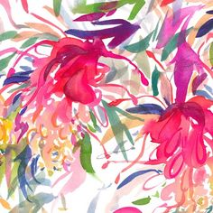 """""""Grevillea Trio"""" is a fine art limited edition print on beautiful textured paper by Natalie Martin. Australian Native Flowers, Australian Wildflowers, Abstract Flower Art, Flower Artwork, Pop Art Colors, Natalie Martin, Watercolor Paintings, Watercolours, Watercolor Flowers"""