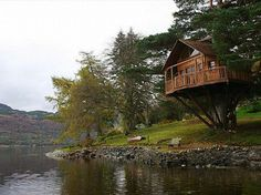 awesome tree houses to live in