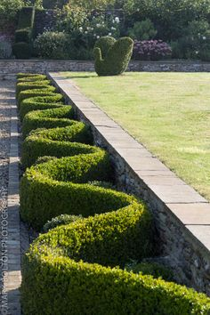 Topiary hedging in autumnal garden Boxwood Garden, Garden Hedges, Topiary Garden, Garden Art, Formal Gardens, Outdoor Gardens, Garden Landscape Design, Parcs, Garden Spaces