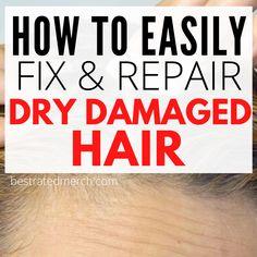 Hair Masks For Dry Damaged Hair, Bleach Damaged Hair, Damaged Hair Repair, Diy Hair Treatment, Treatment For Damaged Hair, Dry Hair Remedies, Best Diy Hair Mask, Thin Hair Styles For Women, Colored Hair Tips