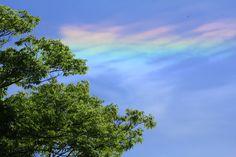 「彩雲(さいうん)」とは、太陽の近くを通りかかった雲が、赤や緑など様々な色に彩られる現象のことをいいます。古来から瑞相(良いことが起きる前触れ)の一つと言われ、「見た人には幸運が訪れる」とも言われているんですよ。虹のように鮮やかでこんなにきれいな雲を見ることができたら、なにか良いことが起きる予感がしますね。ちょっと疲れた時には空を見上げて、彩雲を探してみるのもいいかもしれませんよ♪