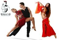 56% off Your Choice of Oriental / Salsa Dance Classes for 1 Month at Phocus Gym ($20 instead $45)