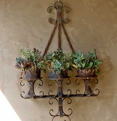 Sconce for Pillar candles used to hold succulents