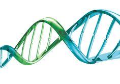 Testes genéticos: quando você precisa fazer