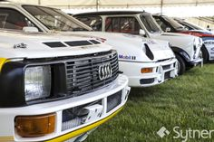 A Line Up of Iconic Rally Cars