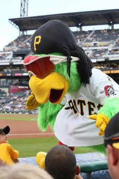 Pittsburgh Pirates Parrot mascot, PNC Park, July 29, 2013.  Canon EOS 6D / Canon 70 300mm f/4 – f/5.6 IS USM Photo by Gerry Dawes©2013 / gerrydawes@aol.com.