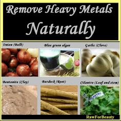 Remove Heavy Metals Naturally ♥ Cilantro Pesto recipe for Heavy Metal Removal 2 bunches cilantro 4 cloves garlic 1/4 cup almonds 1/4 cup sunflower seeds or pumpkin seeds juice of lemon flaxseed oil Himalayan Crystal Salt to taste
