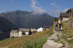 In der Natur unterwegs: Vier Täler, drei Pässe im Locarnese - Alpe Pian Secco oberhalb Spruga - #ExpeditionLocarnese