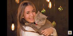 Cats, Artist, Animals, Queen, Gatos, Animales, Animaux, Artists, Animal