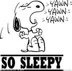 Snoopy. ..good night!