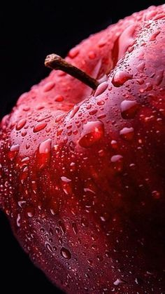 Fruit And Vegetables Photography Still Life Food Styling 57 Trendy Ideas Fruit And Veg, Fruits And Vegetables, Fresh Fruit, Growing Vegetables, Apples Photography, Vegetables Photography, Still Life Photography, Creative Photography, Food Photography