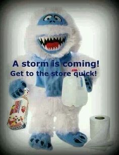 A snowstorm is coming!
