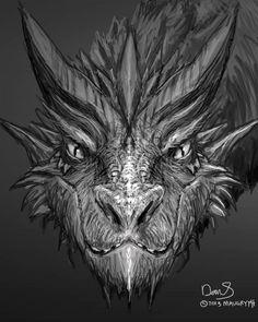 Smaug like dragon More
