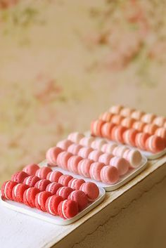 Dollhouse miniatures -- French macarons.  <3