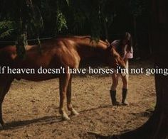 You'll never understand the love a girl has for her horse.