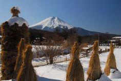 Oshino-Hakkai