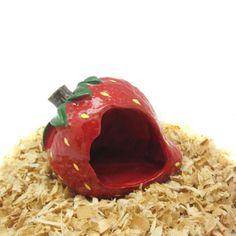 Alfie Pet Small Animal Hideout - Strawberry Hut (Living Habitat for Dwarf Hamster and Mouse) Alfie http://www.amazon.com/dp/B00CTI78F6/ref=cm_sw_r_pi_dp_uckPub1MVGX6S