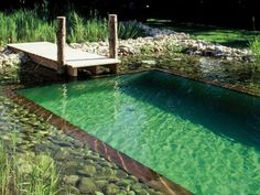 Good and Simple Shipping Container Swimming Pool Ideas on Your Backyard - Page 10 of 92 Natural Swimming Ponds, Natural Pond, Swimming Pool House, Swiming Pool, Modern Pond, Shipping Container Swimming Pool, Mini Pool, Small Pools, Dream Pools