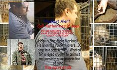 He's been found but please do not forget his face. Never give him any other dogs at any other time his name is Steve Markwell, He took over 100 animals illegally. He was wanted for cruelty to animals,; neglected, abused, abandoned while in his care.