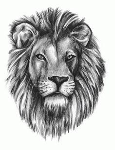 Google Image Result for http://i392.photobucket.com/albums/pp9/newtattoodesigns/Animals%2520Tattoo%2520Designs/Lion/tattooleolion.jpg#