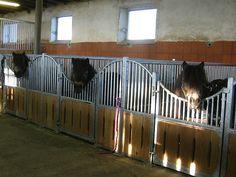 Indoor-stalls Equipe - Hau Horse Stalls, Indoor-stalls, Panels, Paddocks, Barn accessories