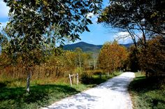 Let's go to Cades Cove and see the beauty of it all!