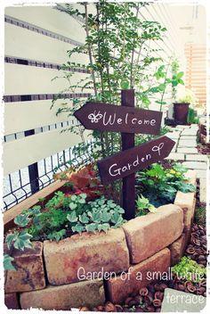 P Garden, Front Gates, Terrace, Garden Design, Grass, Pergola, Backyard, Exterior, Gardening