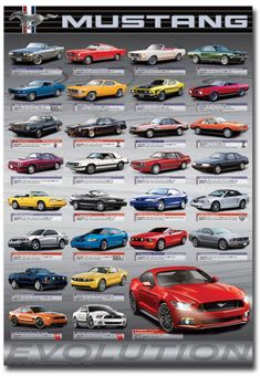 """Ford Mustang Evolution Fridge Magnet Collectible Size 2.5"""" x 3.5"""""""