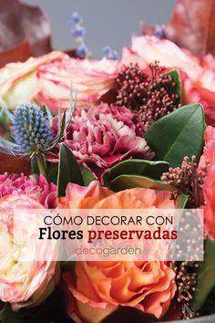¿Has oído hablar de las flores preservadas? ¡Son flores naturales que duran un montón de tiempo y perfectas para decorar! Cabbage, Vegetables, Plants, Baptisms, Wedding Bouquets, Weddings, Cabbages, Vegetable Recipes, Plant