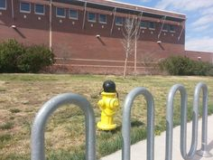 Mueller hydrant outside of Fossil Ridge High School in Fort Collins, CO.  Do hydrants ride bikes?