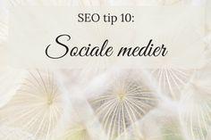 SEO tip10:sociale medier