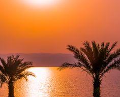 Jordan Highlights: Gerasa, the Dead Sea, and the Map of Madaba Sea Of Galilee, Dead Sea Mud, Ferry Boat, Plate Tectonics, Nile River, Bus Travel, Galapagos Islands, Adventures In Wonderland, Pilgrimage