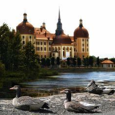 Neu in meiner Galerie bei OhMyPrints: Moritzburg - Dresden