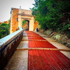 #Rocher #pisa#raki#efes#toskana#turkiye#fenerbahce#besiktas#milano#vino#paris#österreich#followme#i̇stanbul_bigcity#follow#istanbul#italien#wine#galatasaray#alpler#istanbuldayasam#sarap#bozcaada#italy#roma#floransa#venezia#switzerland#roma#monaco#montecarlo by blentdemir from #Montecarlo #Monaco