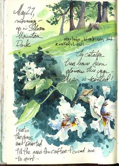 Ideas Nature Art Journal Sketchbook Pages Artist Journal, Art Journal Pages, Art Journals, Travel Journals, Watercolor Sketchbook, Watercolor Art, Tag Art, Arte Sketchbook, Nature Sketch