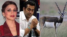 Jodhpur court will hear the case of Bollywood actor Salman Khan's case of black deer today. Chief Judicial Magistrate Dev Kumar Khatri, in connection with the incident in 1998, completed the trial on March 28 and announced the decision later.