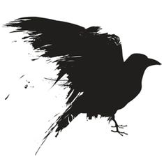 Animal Intelligence: Crows Understand Analogies
