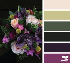 Flora Palette via @designseeds