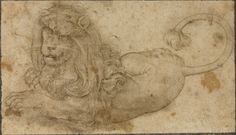 """Study of a Lion,"" Lucas Cranach the Elder, 1509. Pen and brown ink. 