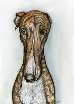 A Little Naughty  Greyhound Art Dog Print by AlmostAnAngel66, £12.00
