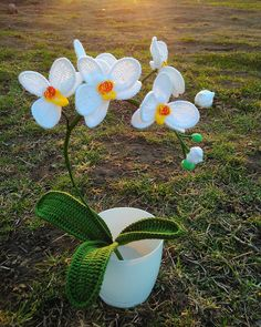 White-yellow crochet orchid