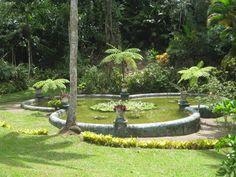 Castleon Botanical Gardens at Castleton, St. Mary