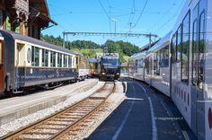 Avventura sui treni in Svizzera, #Gruyere #Svizzera